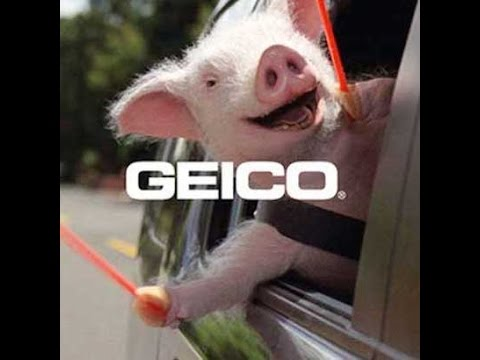 Geico Buying A Car