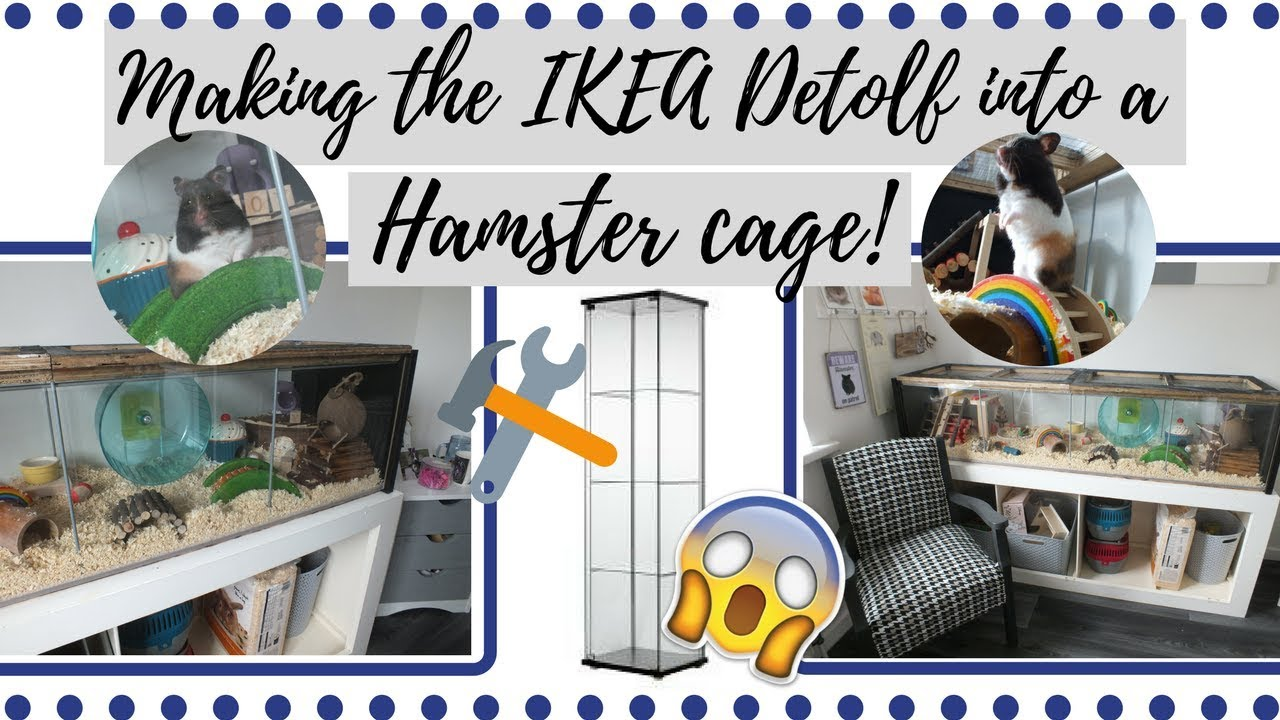 turning the ikea detolf into a hamster cage hamster care sheet guide how to care for your. Black Bedroom Furniture Sets. Home Design Ideas
